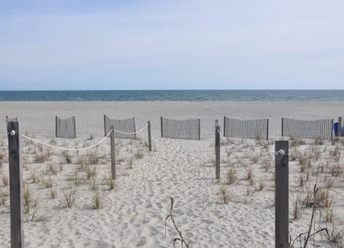 Sandy Paws and Salty Kisses Oceanfront Spacious 3 BR, dog & child friendly